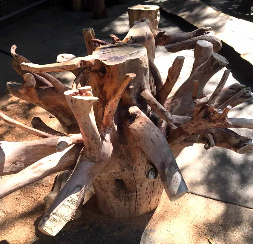 African Furniture│Tree Root Table
